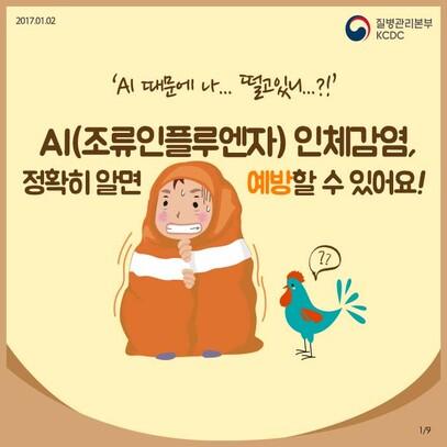 AI(조류인플루엔자) 인체감염 예방수칙