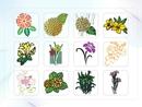 파워포인트 클립아트 수국, 꽃다발