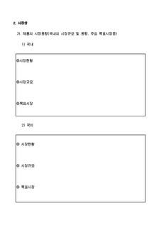 자금조달용 사업계획서 표준(기본서식) #12