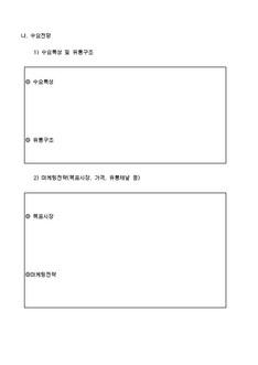 자금조달용 사업계획서 표준(기본서식) #13
