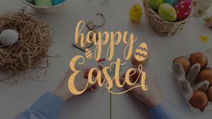 부활절(Easter Bunny) PPT 테마