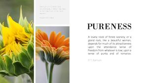 순수(Purity) Theme PPT Slides