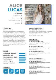 영문 이력서 (IT Specialist(IT/Programmer) resume) 상세보기