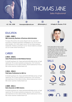 영문 이력서 (Sales Professional(Sales) resume)
