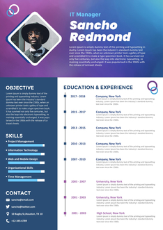 영문 이력서 (It Manager(IT) resume)