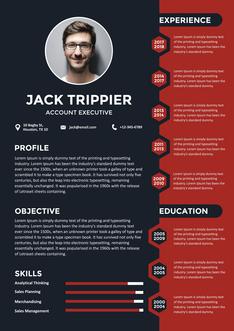 영문 이력서 (Account Executive(Account Management) resume)