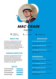 영문 이력서 (Assembler(Engineer) resume)