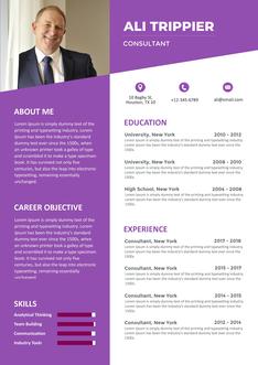 영문 이력서 (Consultant(Consultation) resume)