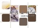파워포인트 자기소개서(사회/복지/경력)