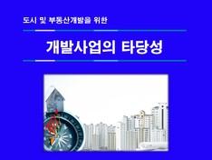 부동산 개발사업의 타당성 분석 보고서