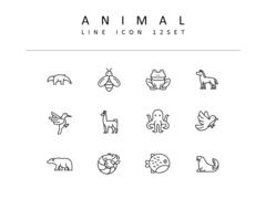 동물 라인 아이콘 3종세트(4)