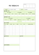 주간계획 보고서(상세양식)