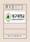대구대 Report 표지