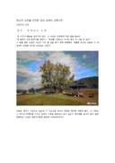 금산 요광리 은행나무 소개
