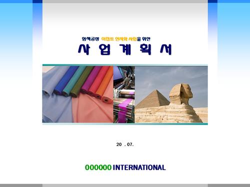 염색공장 해외투자 사업계획서(투자자금 조달용) - 섬네일 1page