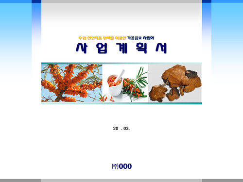 비타민나무 가공음료 투자사업계획서(투자자금 조달용) - 섬네일 1page