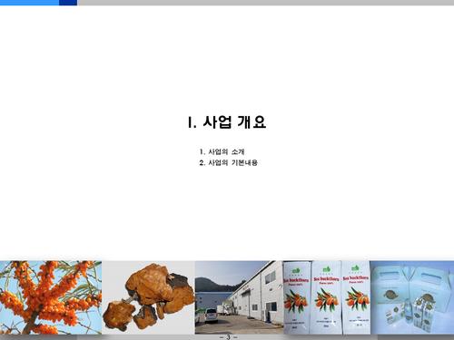 비타민나무 가공음료 투자사업계획서(투자자금 조달용) - 섬네일 3page