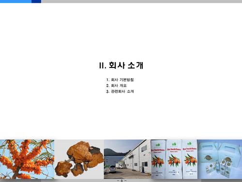 비타민나무 가공음료 투자사업계획서(투자자금 조달용) - 섬네일 6page