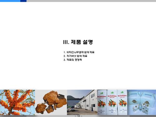 비타민나무 가공음료 투자사업계획서(투자자금 조달용) - 섬네일 10page