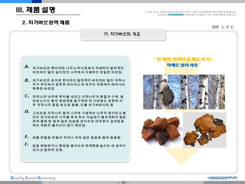 비타민나무 가공음료 투자사업계획서(투자자금 조달용) - 섬네일 15page