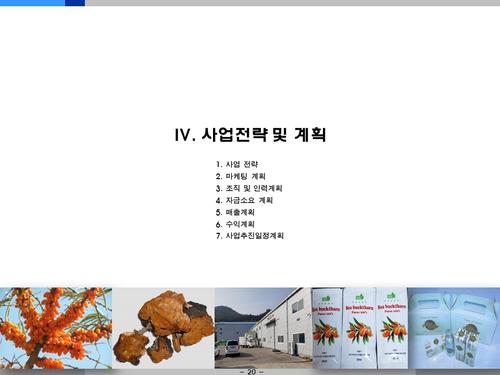 비타민나무 가공음료 투자사업계획서(투자자금 조달용) - 섬네일 20page