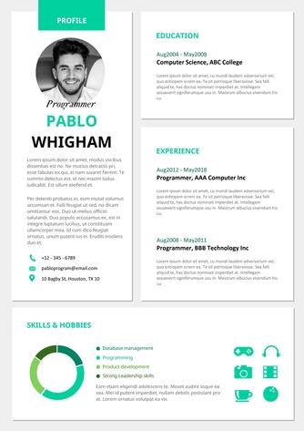 영문 이력서 (Programmer(IT) resume) - 섬네일 1page