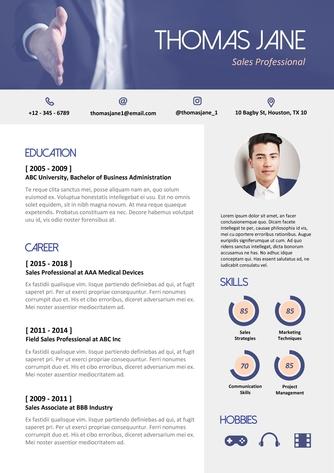 영문 이력서 (Sales Professional(Sales) resume) - 섬네일 1page