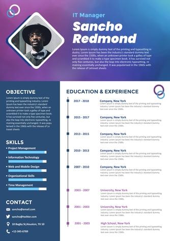 영문 이력서 (It Manager(IT) resume) - 섬네일 1page