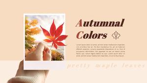 가을의 색 (Autumnal Colors) 단풍 피피티 배경