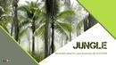 정글 파워포인트 배경화면 (야자수, 자연)
