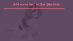 깜찍한 강아지 파워포인트 배경화면 - 와이드