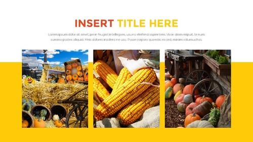 추수감사절(Thanksgiving Day) 템플릿 - 섬네일 9page