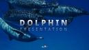 Dolphin(돌고래) 파워포인트 배경 템플릿