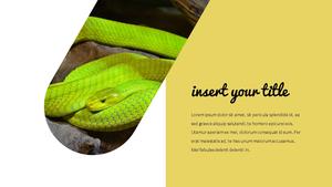 뱀 (Snake) PPT 템플릿 16:9