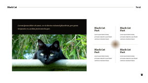 Black Cat 고양이 PPT 16:9