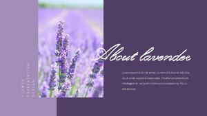 라벤더 (lavender) 파워포인트 템플릿