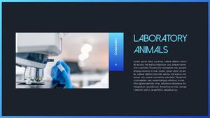 동물 실험 반대 (Stop Animal Testing) PPT