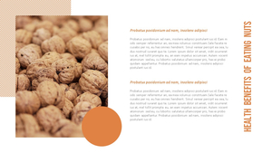 넛츠 (nuts) 파워포인트 템플릿 (16:9)