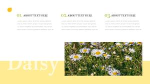 봄, 데이지 꽃 PowerPoint Template
