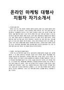 온라인 마케팅 대행사 지원자 자기소개서