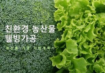친환경 농산물 웰빙 가공 사업계획서