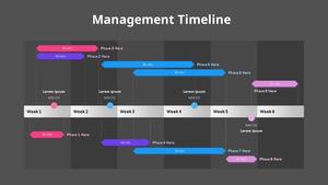 매니지먼트 Timeline 다이어그램