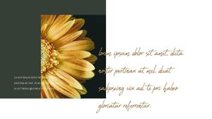 해바라기 Sunflower 템플릿