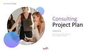 컨설팅 프로젝트 (Consulting Project Plan) ppt