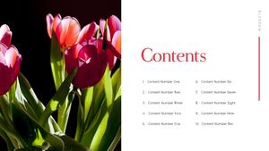 Tulip (튤립) PPT 16:9