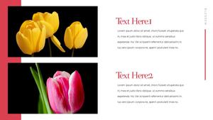 Tulip  튤립 PPT 16:9(파워포인트>프리미엄 PPT>자연/환경) - 예스폼 쇼핑몰 #7