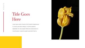 Tulip  튤립 PPT 16:9(파워포인트>프리미엄 PPT>자연/환경) - 예스폼 쇼핑몰 #10