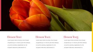 Tulip  튤립 PPT 16:9(파워포인트>프리미엄 PPT>자연/환경) - 예스폼 쇼핑몰 #13