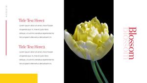 Tulip  튤립 PPT 16:9(파워포인트>프리미엄 PPT>자연/환경) - 예스폼 쇼핑몰 #18