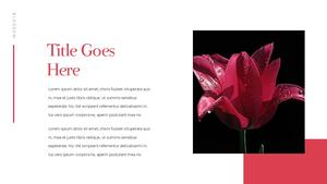 Tulip  튤립 PPT 16:9(파워포인트>프리미엄 PPT>자연/환경) - 예스폼 쇼핑몰 #20